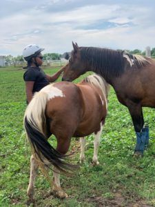 a black youth pets two horses that stand next to her